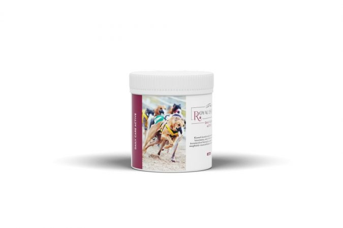 Daily Care Active 600 g (Sportkutyáknak)